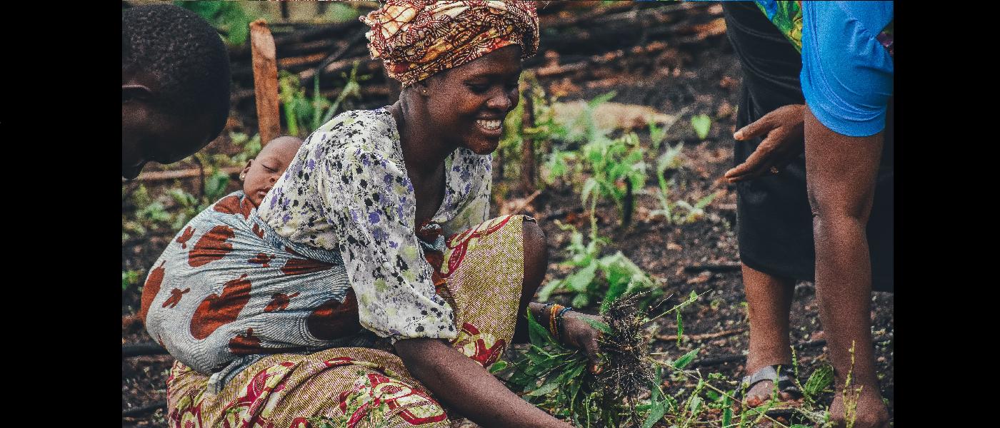 Secteur Agriculture et Développement Rural